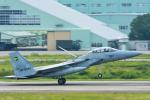 パンダさんが、小松空港で撮影した航空自衛隊 F-15DJ Eagleの航空フォト(飛行機 写真・画像)