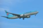 パンダさんが、小松空港で撮影した大韓航空 737-8Q8の航空フォト(飛行機 写真・画像)