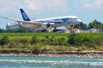 パンダさんが、富山空港で撮影した全日空 787-8 Dreamlinerの航空フォト(写真)