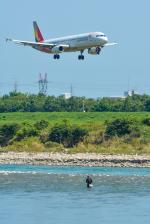 パンダさんが、富山空港で撮影したアシアナ航空 A321-231の航空フォト(飛行機 写真・画像)