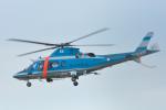 パンダさんが、名古屋飛行場で撮影した愛知県警察 A109E Powerの航空フォト(写真)