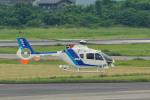 パンダさんが、名古屋飛行場で撮影したオールニッポンヘリコプター EC135T2の航空フォト(飛行機 写真・画像)
