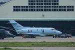 パンダさんが、小松空港で撮影した航空自衛隊 U-125A(Hawker 800)の航空フォト(飛行機 写真・画像)