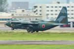 パンダさんが、名古屋飛行場で撮影した航空自衛隊 C-130H Herculesの航空フォト(写真)