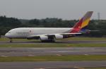 Koenig117さんが、成田国際空港で撮影したアシアナ航空 A380-841の航空フォト(写真)