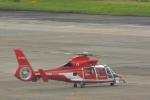 パンダさんが、名古屋飛行場で撮影した名古屋市消防航空隊 AS365N3 Dauphin 2の航空フォト(飛行機 写真・画像)