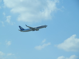 kenmariさんが、那覇空港で撮影した全日空 737-881の航空フォト(写真)
