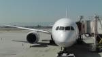 J-birdさんが、ノーマン・Y・ミネタ・サンノゼ国際空港で撮影した全日空 787-8 Dreamlinerの航空フォト(写真)