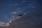 ポン吉さんが、福岡空港で撮影した日本法人所有 A36 Bonanza 36の航空フォト(飛行機 写真・画像)