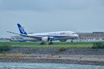 パンダさんが、富山空港で撮影した全日空 787-8 Dreamlinerの航空フォト(飛行機 写真・画像)