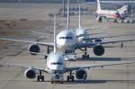 SKYLINEさんが、関西国際空港で撮影した全日空 737-881の航空フォト(飛行機 写真・画像)