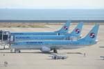 SKYLINEさんが、中部国際空港で撮影した大韓航空 737-8B5の航空フォト(飛行機 写真・画像)