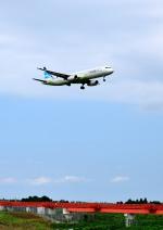 mojioさんが、成田国際空港で撮影したエアプサン A321-131の航空フォト(飛行機 写真・画像)