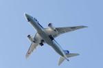 NCT310さんが、東京ヘリポートで撮影した全日空 787-8 Dreamlinerの航空フォト(写真)