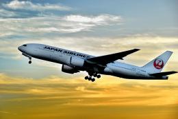 6306さんが、福岡空港で撮影した日本航空 777-289の航空フォト(写真)