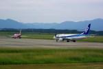 rjnsphotoclub-No.07さんが、静岡空港で撮影した全日空 737-881の航空フォト(飛行機 写真・画像)
