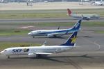 SKYLINEさんが、羽田空港で撮影したスカイマーク 737-8ALの航空フォト(写真)