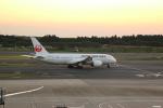 shimayanJPさんが、成田国際空港で撮影した日本航空 787-8 Dreamlinerの航空フォト(写真)