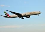mojioさんが、成田国際空港で撮影したエミレーツ航空 777-36N/ERの航空フォト(飛行機 写真・画像)