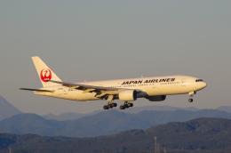 岳南航空さんが、新千歳空港で撮影した日本航空 777-246の航空フォト(飛行機 写真・画像)