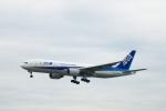 小鉢さんが、伊丹空港で撮影した全日空 777-281の航空フォト(飛行機 写真・画像)
