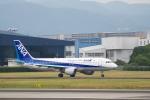 小鉢さんが、伊丹空港で撮影した全日空 A320-211の航空フォト(飛行機 写真・画像)