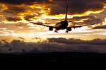 仙台空港 - Sendai Airport [SDJ/RJSS]で撮影された全日空 - All Nippon Airways [NH/ANA]の航空機写真