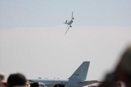 浜松基地 - Hamamatsu Airbase [RJNH]で撮影された航空自衛隊 - Japan Air Self-Defense Force - 第602飛行隊 - の航空機写真