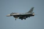 f-4ejkaiさんが、浜松基地で撮影した航空自衛隊 F-2Aの航空フォト(写真)