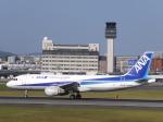 あしゅーさんが、伊丹空港で撮影した全日空 A320-211の航空フォト(飛行機 写真・画像)
