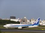 あしゅーさんが、伊丹空港で撮影した全日空 737-881の航空フォト(飛行機 写真・画像)
