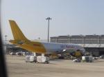 あしゅーさんが、関西国際空港で撮影したエアー・ホンコン A300F4-605Rの航空フォト(飛行機 写真・画像)