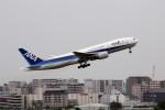 アイスコーヒーさんが、伊丹空港で撮影した全日空 777-281の航空フォト(飛行機 写真・画像)