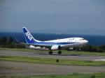 とろーるさんが、大島空港で撮影した全日空 737-781の航空フォト(写真)