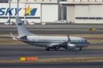 bigbam45さんが、羽田空港で撮影したサウジアラビア王室空軍 737-7DP BBJの航空フォト(写真)