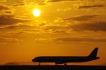 TakahitoIkawaさんが、松山空港で撮影したアシアナ航空 A321-231の航空フォト(写真)