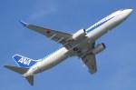 コスモマイクさんが、那覇空港で撮影した全日空 737-881の航空フォト(写真)