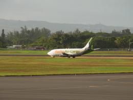 兵庫さんが、ヒロ国際空港で撮影したアロハ・エア・カーゴ 737-2X6C/Advの航空フォト(飛行機 写真・画像)
