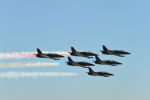 こずぃろうさんが、ミラマー海兵隊航空ステーション で撮影したPatriots Jet Team L-39C Albatrosの航空フォト(飛行機 写真・画像)