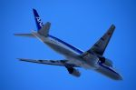 tsubasa0624さんが、羽田空港で撮影した全日空 777-281の航空フォト(写真)
