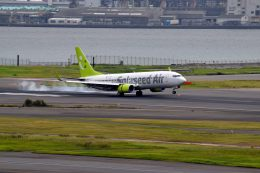 tsubasa0624さんが、羽田空港で撮影したソラシド エア 737-81Dの航空フォト(写真)