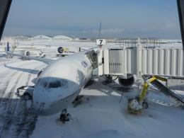 あお♪さんが、ジョン・F・ケネディ国際空港で撮影したユナイテッド航空 757-222の航空フォト(飛行機 写真・画像)