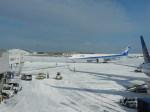 あお♪さんが、ジョン・F・ケネディ国際空港で撮影した全日空 777-381/ERの航空フォト(写真)