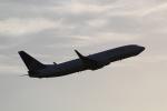 ANA744Foreverさんが、成田国際空港で撮影したユナイテッド航空 737-824の航空フォト(飛行機 写真・画像)
