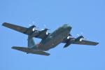 パンダさんが、茨城空港で撮影した航空自衛隊 C-130H Herculesの航空フォト(飛行機 写真・画像)