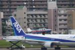 コバトンさんが、福岡空港で撮影した日本法人所有 A36 Bonanza 36の航空フォト(飛行機 写真・画像)