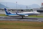 ぽんさんが、高松空港で撮影した全日空 737-881の航空フォト(写真)
