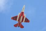 パンダさんが、茨城空港で撮影した航空自衛隊 F-2Bの航空フォト(写真)