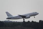 ANA744Foreverさんが、成田国際空港で撮影したホワイト・エアウェイズ A319-133X CJの航空フォト(写真)