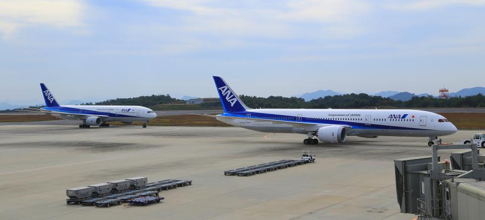 ふじいあきらさんの全日空 Boeing 787-9 (JA833A) 航空フォト